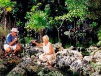 Maravillosos cenotes