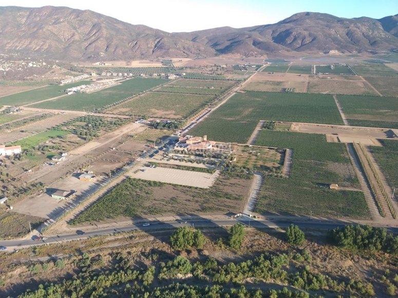 Vue vers les montagnes de la Valle de Guadalupe