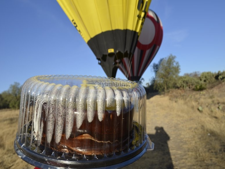 Beautiful hot air balloon