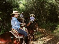 Discover beautiful natural corners with our horseback rides