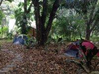Tour to Jalcomulco with camp