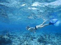 Snorkel en aguas claras