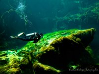 Bautismo de buceo en Casa cenote en Tulum