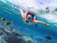 snorkel con aventux