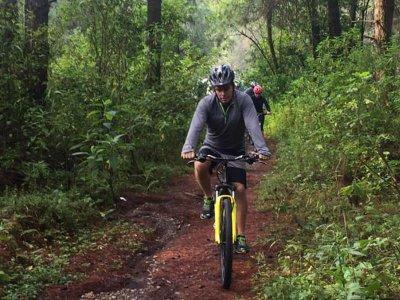 Ruta en bicicleta por el bosque de Valle de Bravo