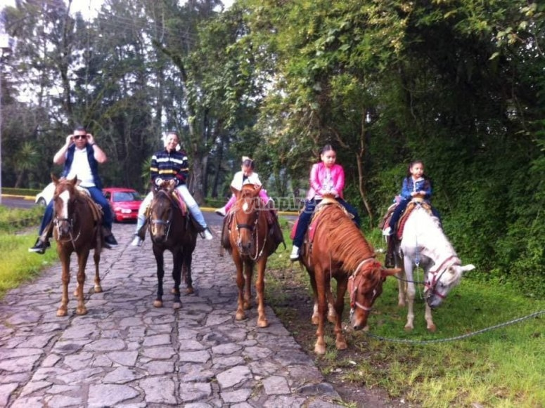 Horseback riding with the family