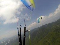 Synchronized paragliders