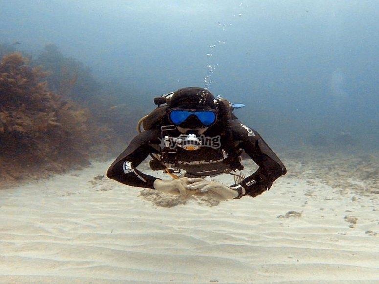 Buceando en el caribe