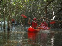 Recorrido en kayak y comida en Jalcomulco 7 horas