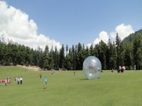 Play with the zorbing