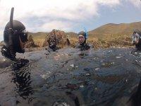 Snorkeling and transportation in Bahía de Arbolitos 6 hours