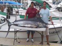 Enorme pescado