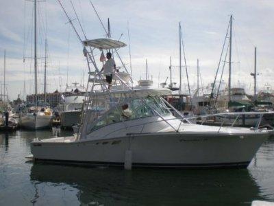 Charly´s Sailing & Sportfishing Paseos en Barco