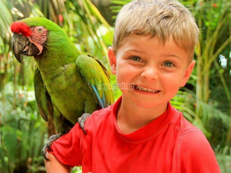 Encuentro con animales tropicales