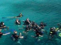 Deporte del snorkel