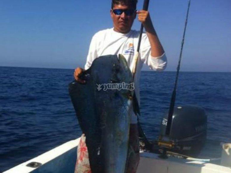 Sport fishing in zihuatanejo