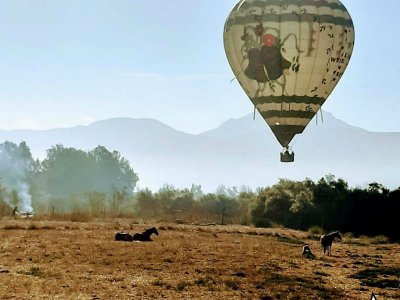 Private balloon flight for 2 on the Wine Route