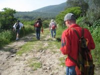Guides and walking