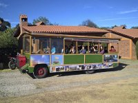 Tram tour in Huasca with tastings 3h