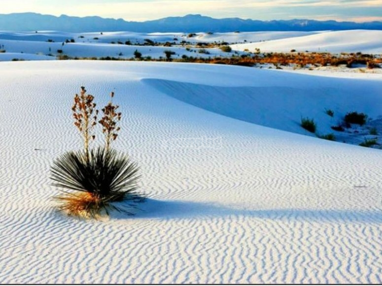 Beautiful plaster dunes