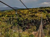 hanging bridges (1)