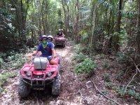 Atravezando la selva