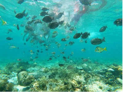 Tour to Isla Mujeres with snorkel and lunch 6 h