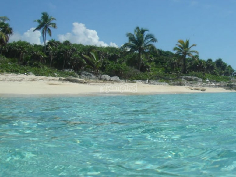 Playas del mar caribe ideales para practicar buceo