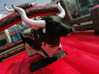 Mechanical bull rental for parties CDMX 5 hours