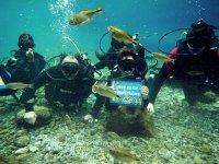 Aventuras subacuaticas