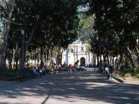 Centennial Garden Coyoacán