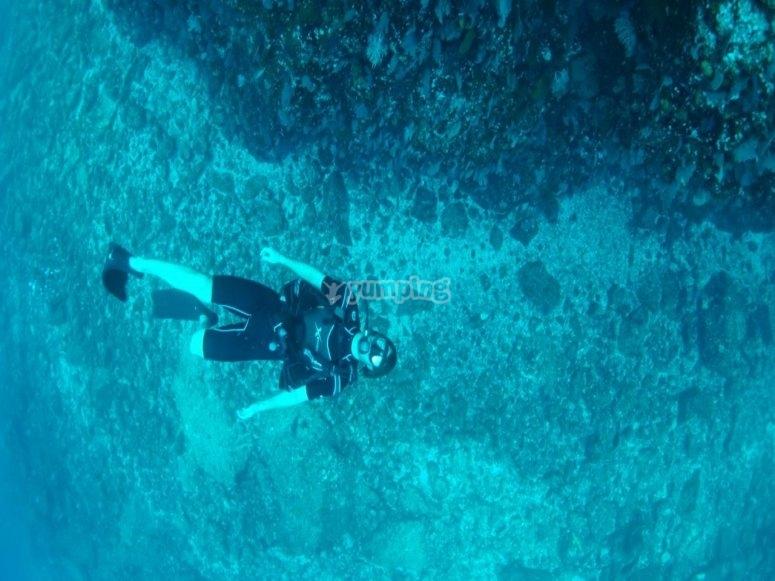 El mejor buceo en Nayarit