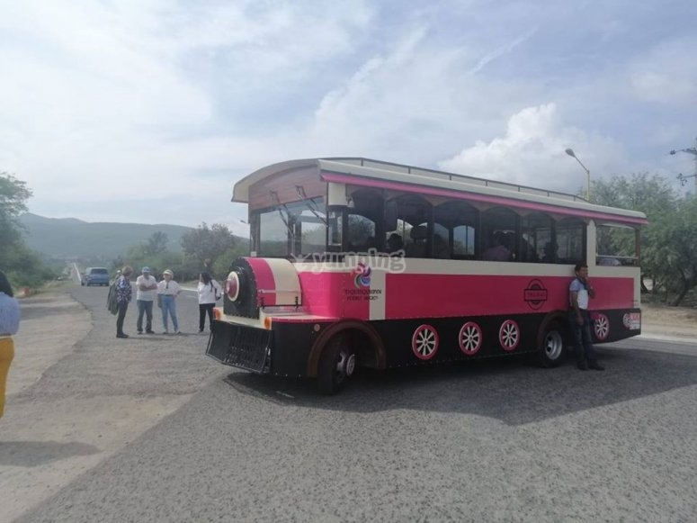 Tram for tourism