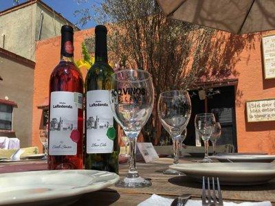 Vineyard and tram tour in Bernal 8 hours