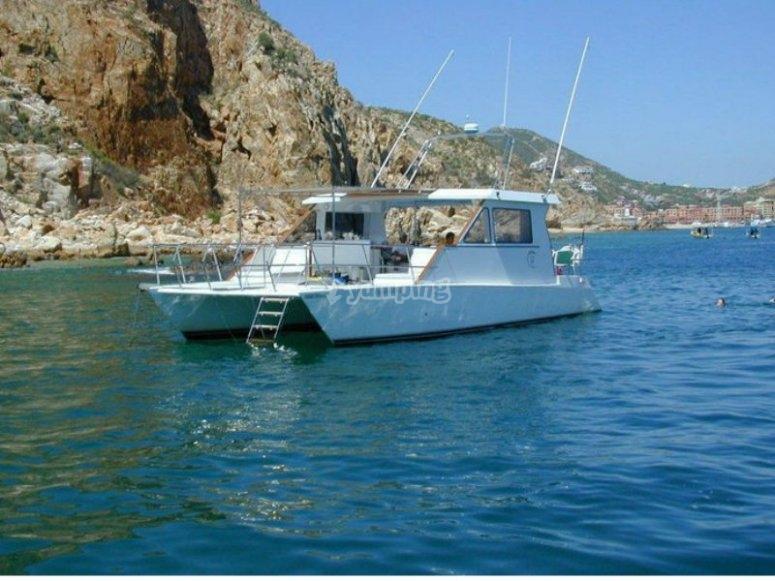 Tours de catamarán