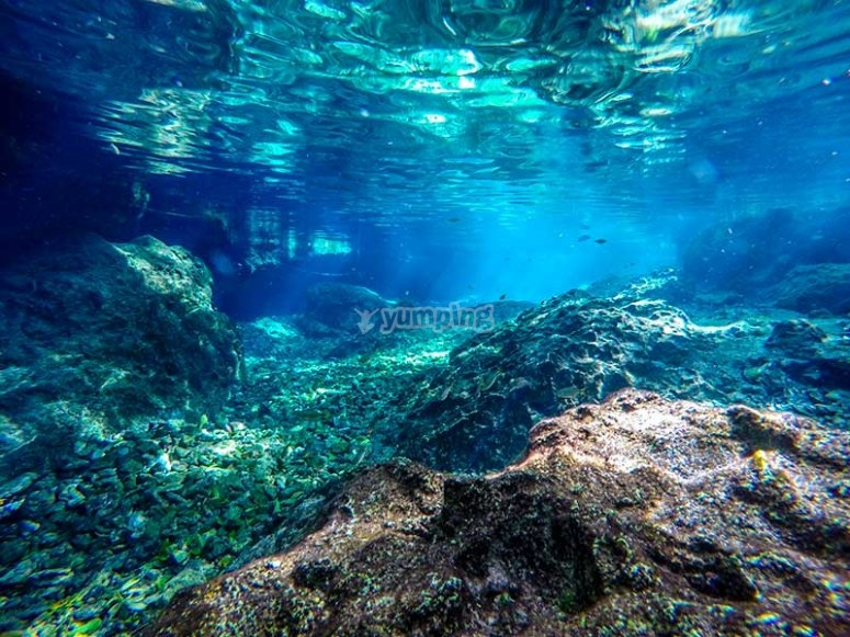 Enjoy the crystal clear waters of the cenote
