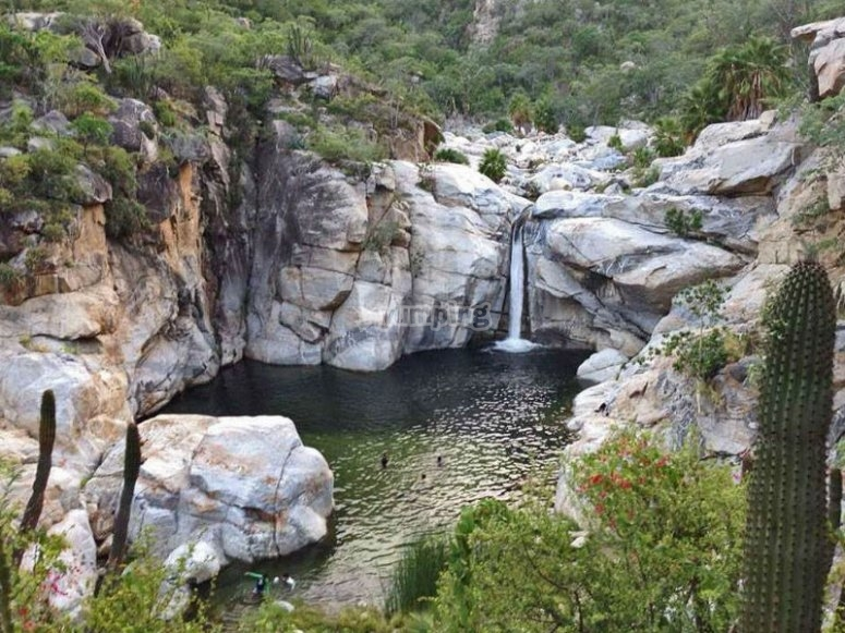 Natural spectacle in Sierra de la Laguna