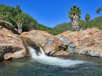 Tour a la Sierra de la Laguna BCS 1 día