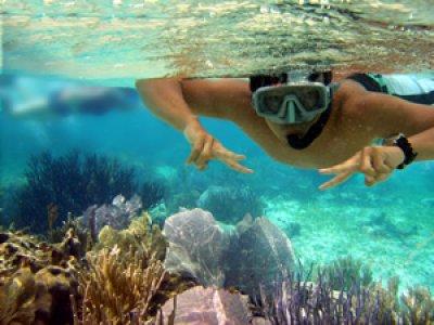 Puerto Morelos Adventures Snorkel