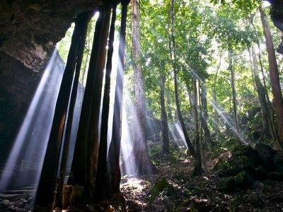 Excursión a selva y cenote en la Riviera Maya 1d