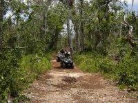 Caribbean jungle in ATV
