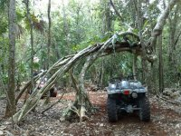 Cuatrimotos en  la selva