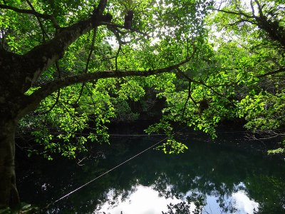 Aventura de buceo en Cenote Angelita 6 horas