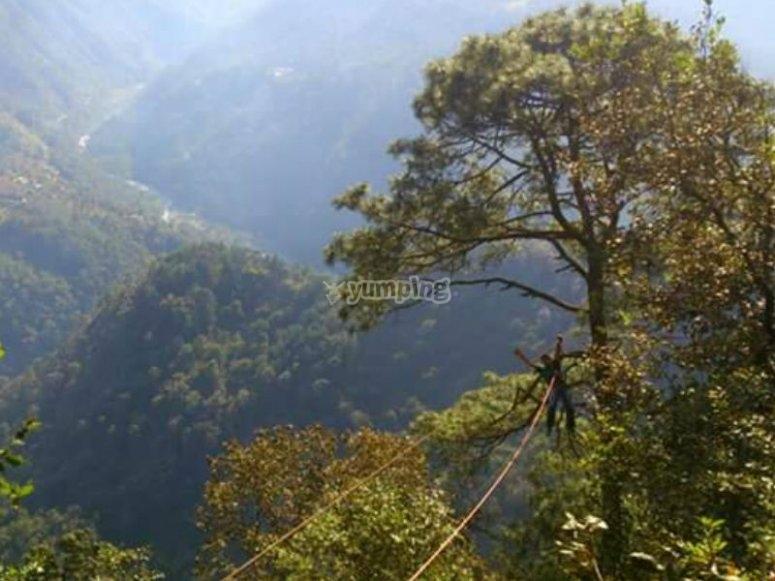 Views towards the ravine