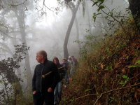 Hike on mountain trails in Zacatlán 2 hours