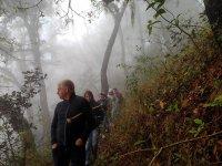 Hiking in the ravine