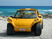 Buggy on the island