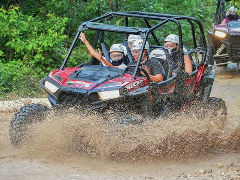 Our buggies will make you have a very fun day