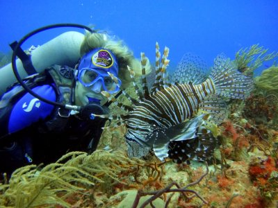 Diving adventure in Paamul in Riviera Maya 1 hour