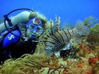 Aventura de buceo en Paamul en Riviera Maya 1 hora